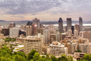 RobboDesign - Montreal SEO Services